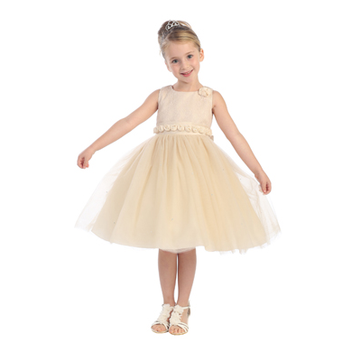 Lace Embroidered Girls Party Dress